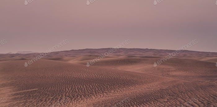 Beautiful sand dunes in the desert.