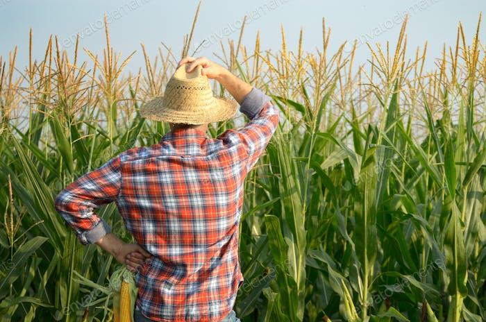 Среднего возраста кавказский работник фермы в соломе га