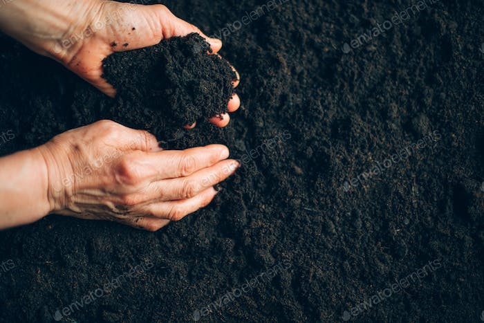 Soil in farmer arms over good brown soil background. Agriculture, organic gardening, planting or