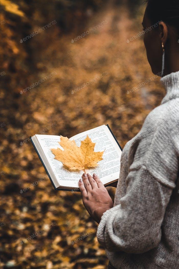 Herbstkonzept, ein offenes Buch in den Händen eines Mädchens mit gelben Blättern