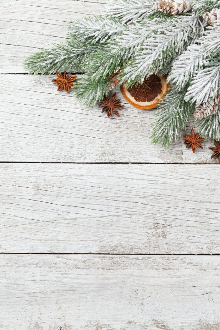 Christmas card with fir tree spices