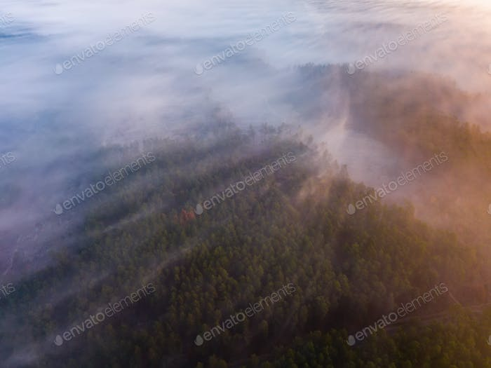 Beautiful misty dawn. Flying above the clouds, drone video