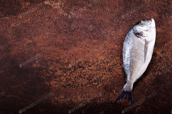 Uncooked fish on dark vintage background. Free space for your text
