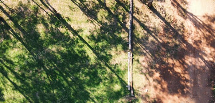 Aerial top view image of pine woods in the forest and the dirt road by drone