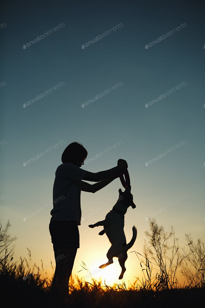 Silhouette of woman playing with a dog.
