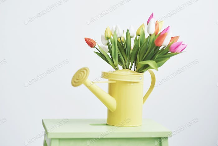 yellow funnel with small colored flowers tulps. Beutiful spring flowers