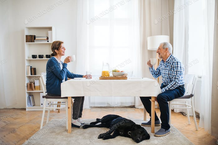 A senior couple with a pet dog sitting at the table at home, having breakfast.