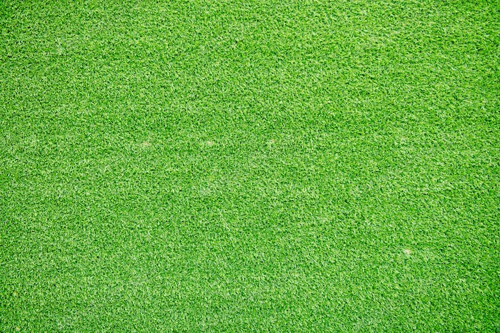 Natural grass texture patterned background in golf course turf from top view.
