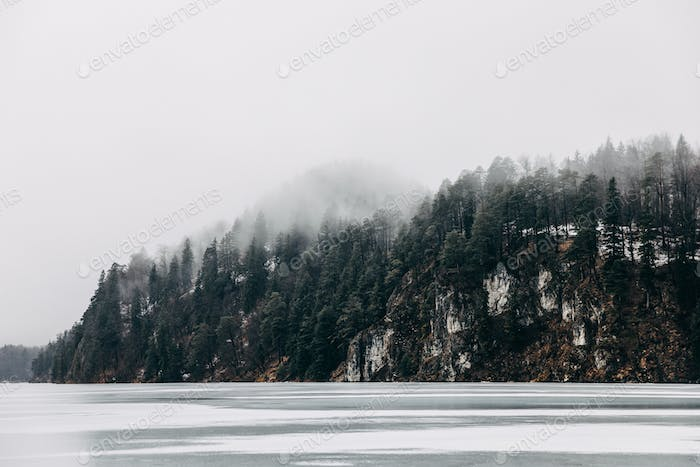 beautiful tranquil landscape with frozen mountain lake and trees on shore at mist, fussen, germany