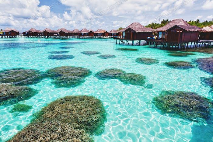 Über Wasser Bungalows und Lagune mit Korallen
