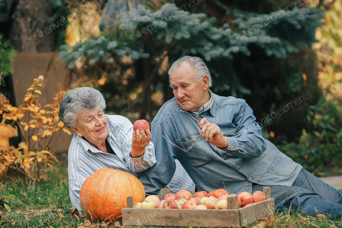 Old couple sittingin a summer garden with harvest