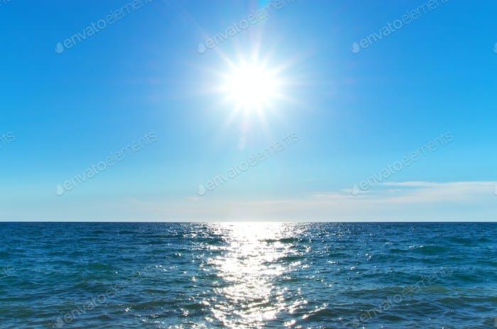 Coast of beach at day