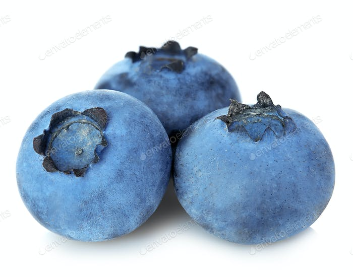 Fresh ripe blueberries close-up isolated on a white background.