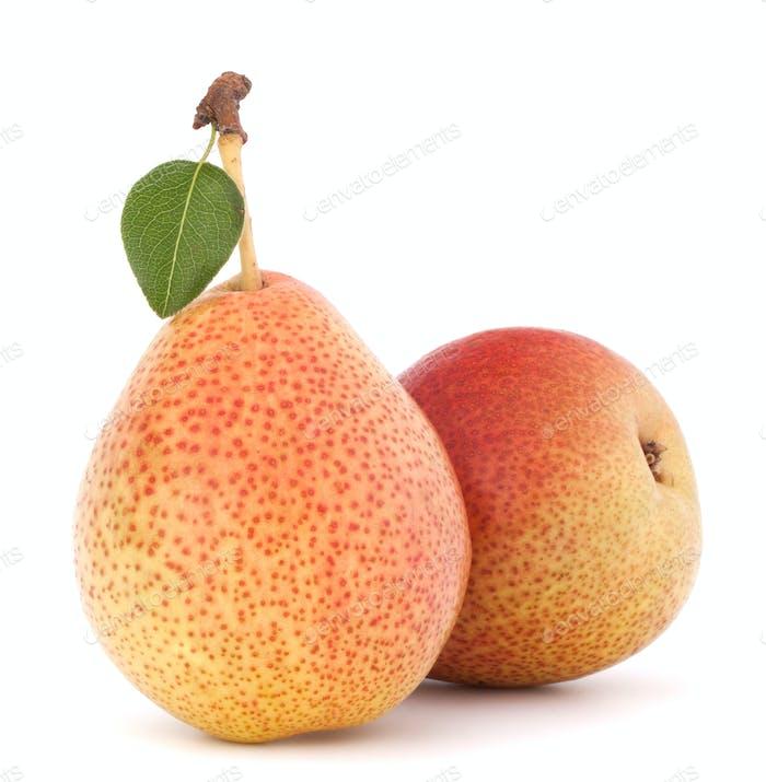 Ripe pear fruit