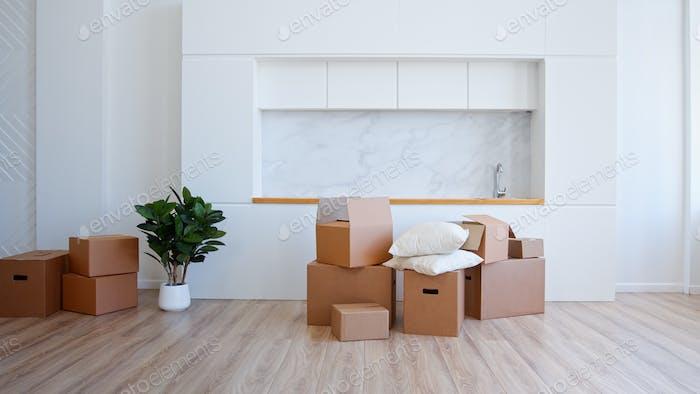Unpack brown cardboard box in new apartment