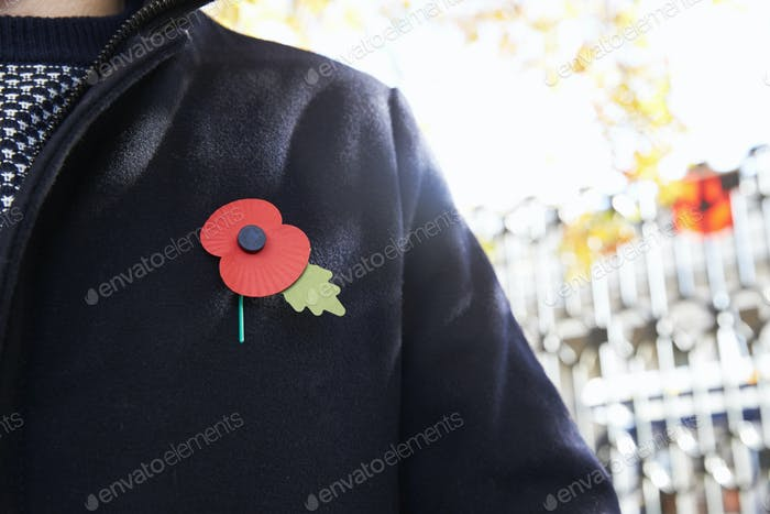 Birmingham, UK - 6 November 2016: Close Up Of Man Wearing Remembrance Day Poppy