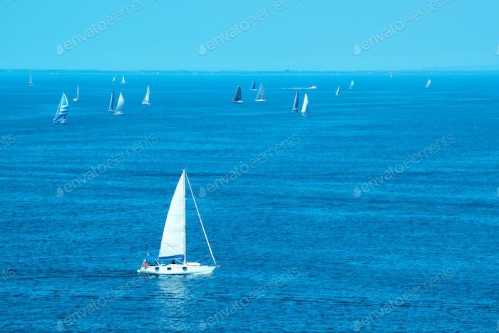 White yachts sailing at sea