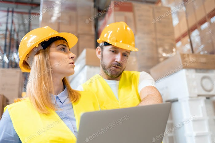 Female warehouse manager consult delivery plans using database in laptop