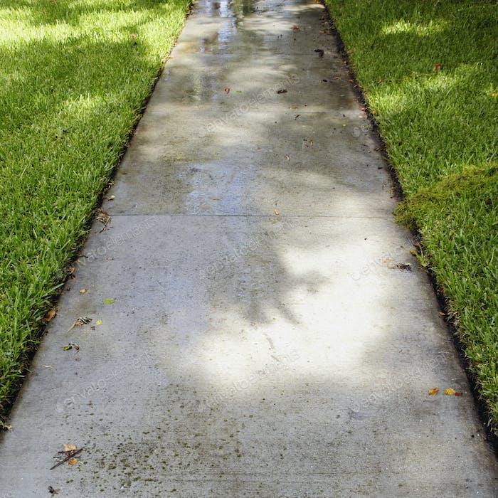 Nasser Bürgersteig durch Gras