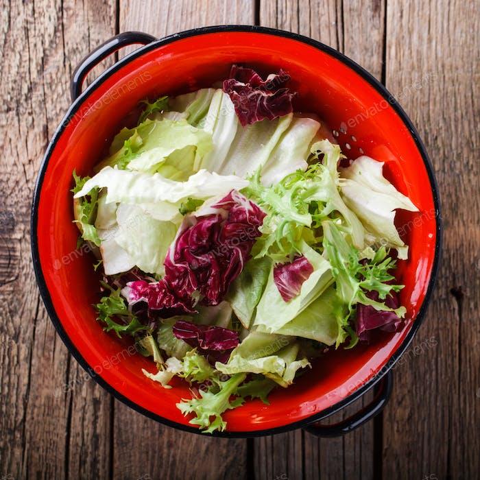Grüner Salat in einem roten Sieb.Capriccio