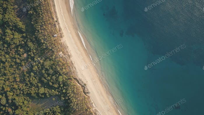 Top down of tropic landscape at ocean bay with sand beach aerial. Nobody nature seascape