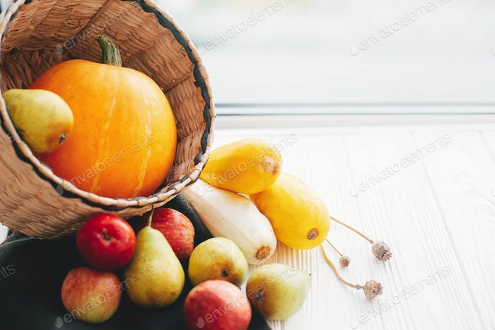 Herbsternte und Hallo Herbstkonzept