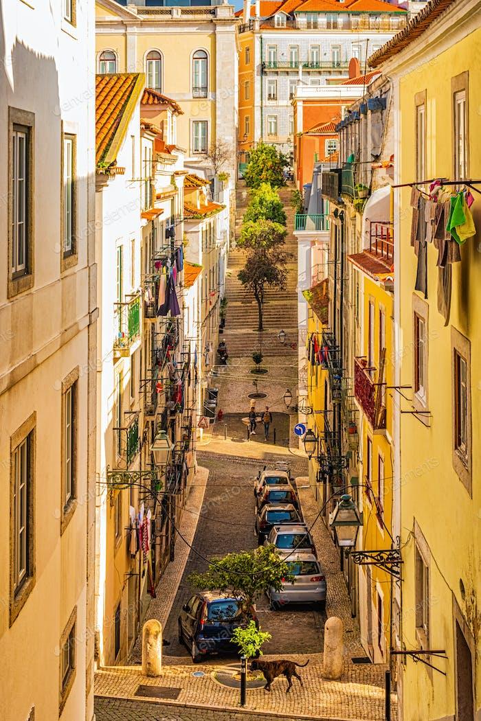 Narrow, authentic street of Lisbon, Portugal