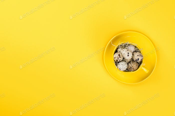 Easter holiday concept .Quail eggs in a yellow mug
