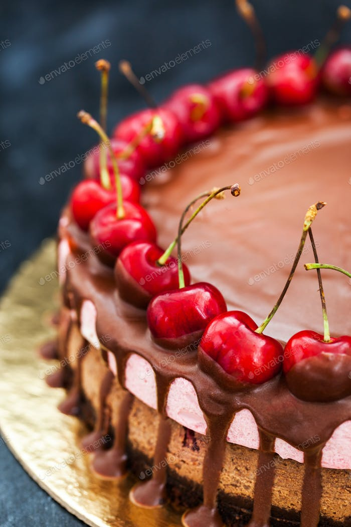 Delicious chocolate and cherry cheesecake dessert decorated with