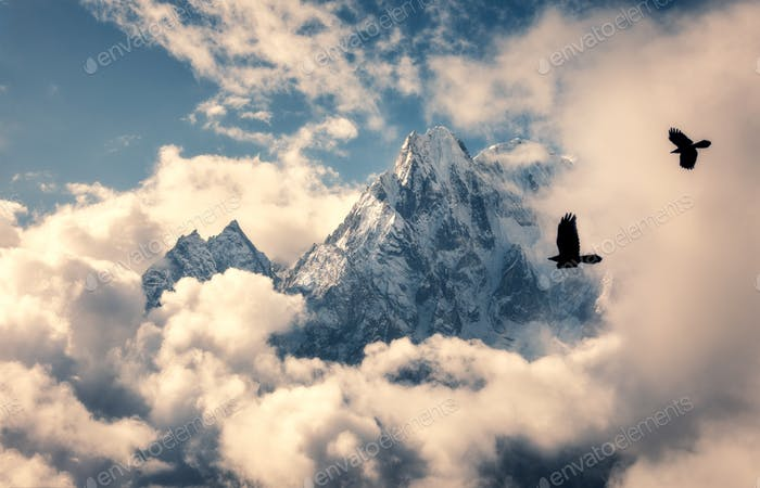 Flying birds against mountain with snowy peak in clouds