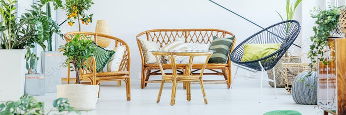Furniture made of rattan