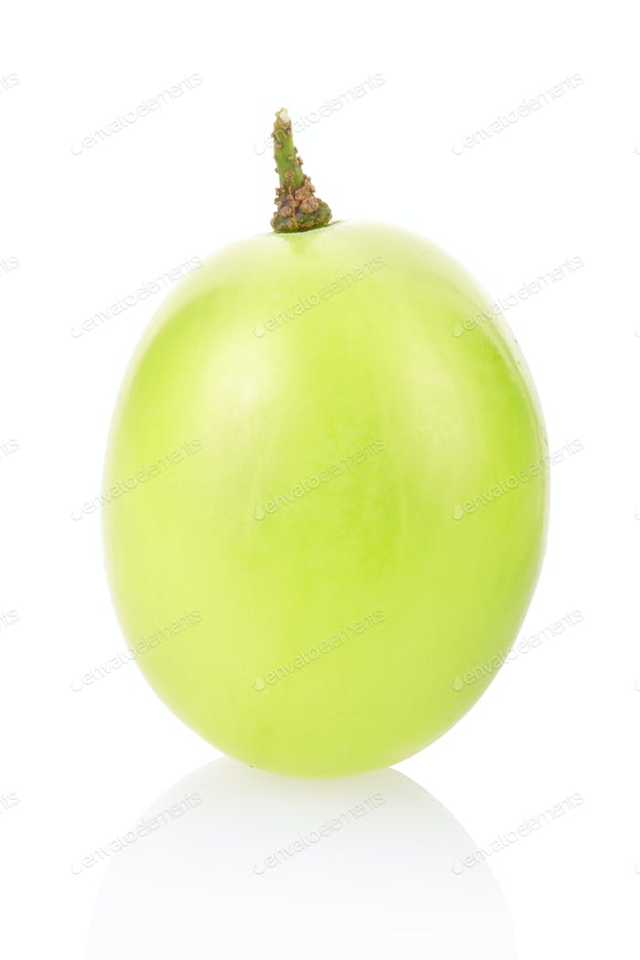 Green grape berry
