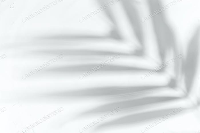 Weißes Pulver oder Mehl mit Pflanzenschatten