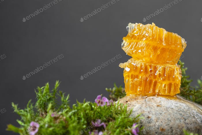 Honeycombs and floral honey on a dark gray background. Horizonta