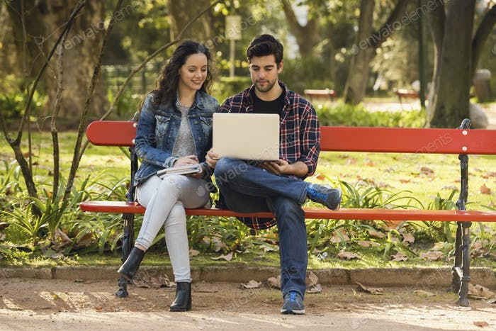 Friends studying in the park