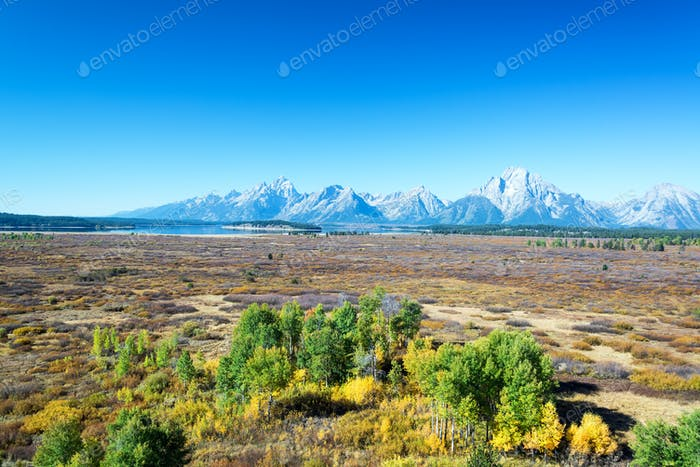 Field and Teton Range