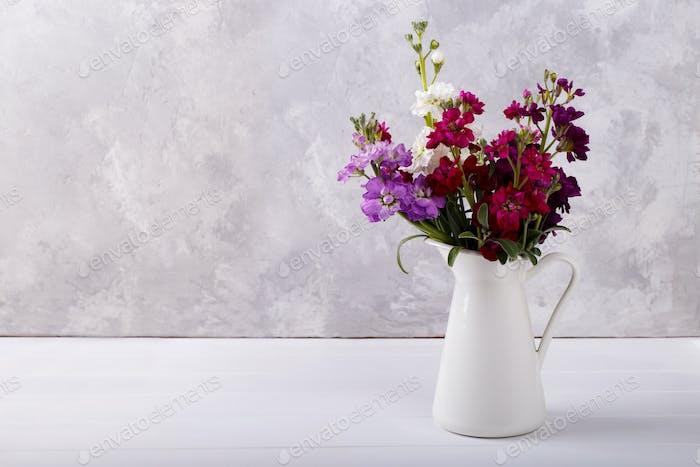 Bouquet of matthiola in a vase